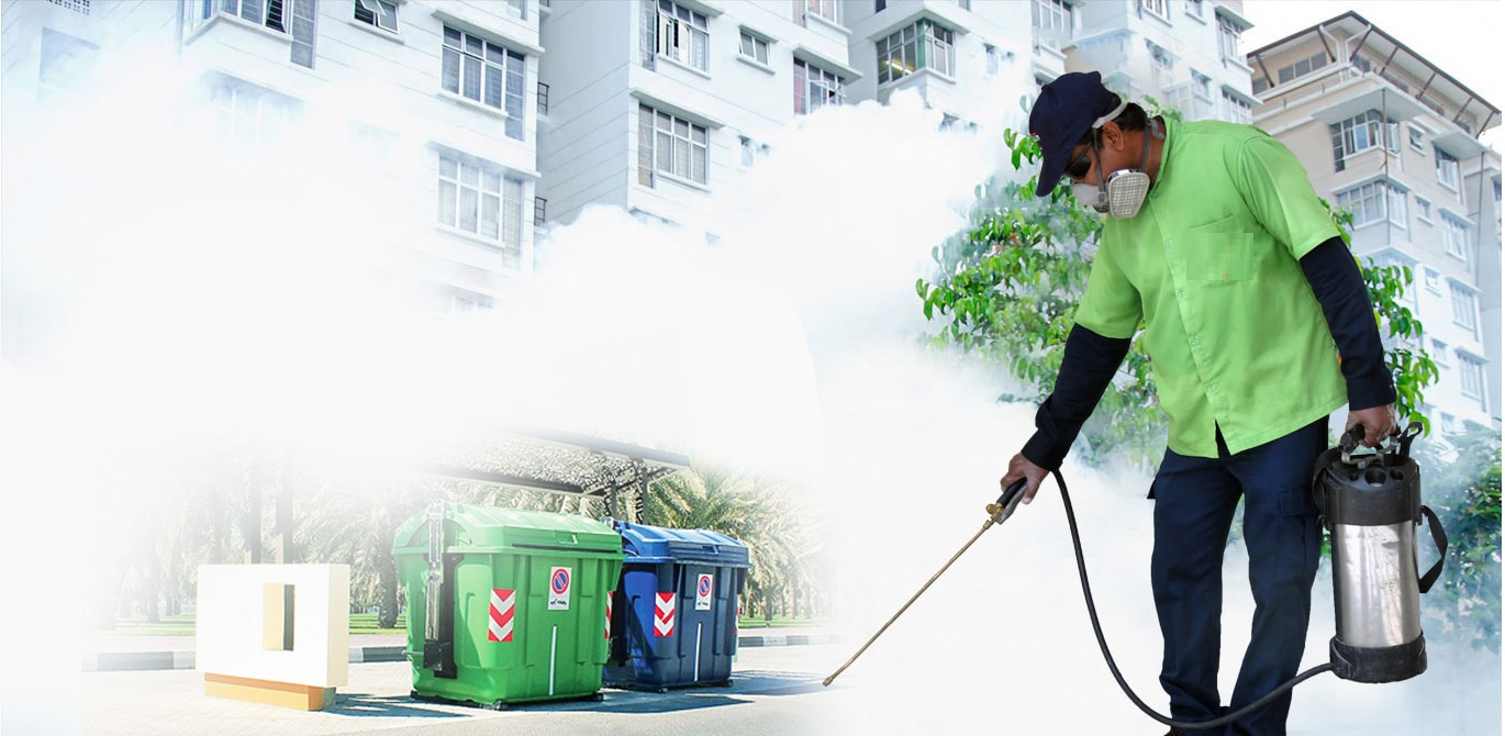 All about Pest Control Services